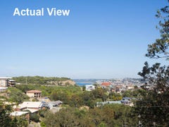 6 Lemnos Parade, The Hill, NSW 2300