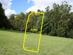 Lot 1 Banks-Smith Drive, Gembrook, Vic 3783