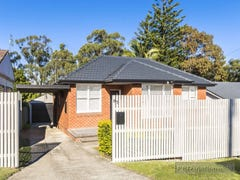 85 Myall Road, Cardiff, NSW 2285