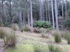 141 Tiers View Road, Golden Valley, Tas 7304