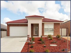 7 Renfree Street, Casey, ACT 2913