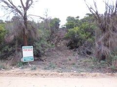 Lot 124, Island Beach Road, Island Beach, SA 5222