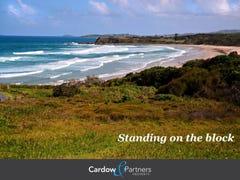 52 Headland Rd, Arrawarra Headland, NSW 2456