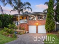 29 Trevor Toms Drive, Acacia Gardens, NSW 2763