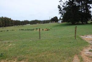 305 Youngs Road, Lileah, Tas 7330