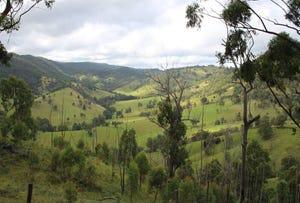 10201 Bruxner Highway, Tenterfield, NSW 2372