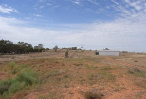 Lot 1 Back Trundle Road, Parkes, NSW 2870