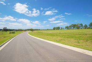 Lot 217 Waterside Pastures, Medowie, NSW 2318