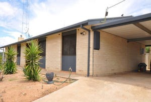 21  Second Street, Morgan, SA 5320