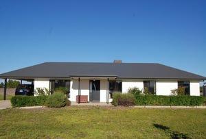 660 Chowilla Street, Renmark, SA 5341