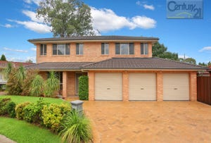 6 Cotter Place, Quakers Hill, NSW 2763