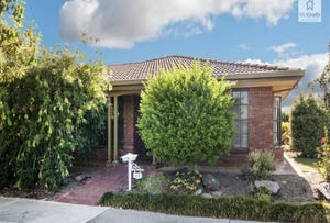 49 Helmsdale Avenue, Glengowrie, SA 5044