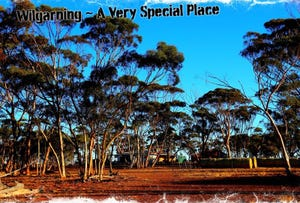Goomalling, address available on request