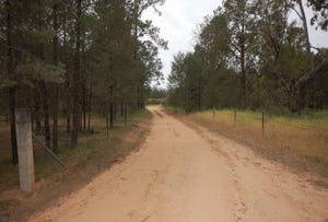 Farm 1777 Narrandera Road, Cudgel, NSW 2700
