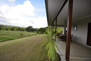 159 Upper Daintree Road, Daintree, Qld 4873