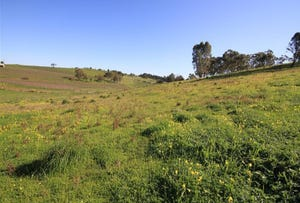 Lot 912 Radford Road, Angaston, SA 5353