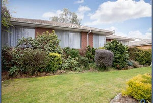 316 Southern Cross Drive, MacGregor, ACT 2615
