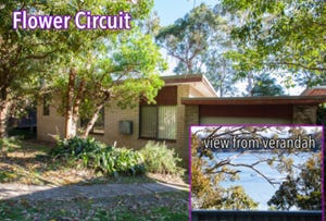 11 Flower Circuit, Akolele, NSW 2546