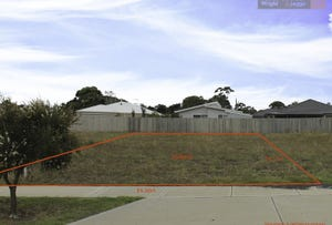 13 Elvington Avenue, Cowes, Vic 3922