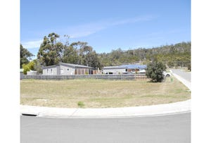 Lot 14, Trochus Street, Orford, Tas 7190