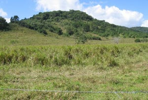 Lot 2 Mossman Mt Molloy Rd, Julatten, Qld 4871