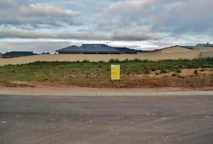 23 Ruby Drive, Mannum, SA 5238