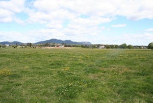 LOT 101 DP 1054037 OXLEY HIGHWAY, Wauchope, NSW 2446