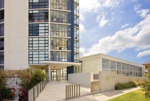 301/221 Sydney Park Road Erskineville, Erskineville, NSW 2043