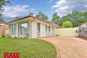 41 Paddy Miller Avenue, Currans Hill, NSW 2567