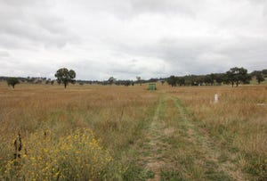 Lot 73/687 Canadian Lead Road, Mudgee, NSW 2850