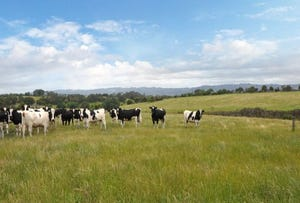 Lot 2 Yarragon-Shady Creek Road, Yarragon, Vic 3823