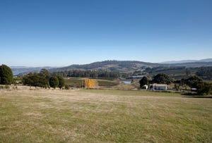 Lot 2, 49 Hillwood Jetty Road, Hillwood, Tas 7252