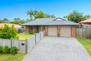8 Belligoi Court, Cleveland, Qld 4163