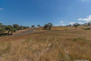 Lot 9 Tarnagulla Estate, Orange, NSW 2800