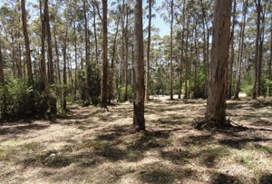 Lot 71 Pember Road East, Denmark, WA 6333