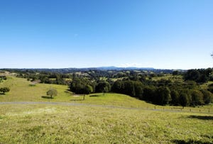 47a Cedarvale Road, Possum Creek, NSW 2479