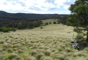 981  Mares Forest Road, Wombeyan Caves, NSW 2580