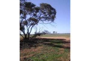 Lot 15393, Koorda-Bullfinch Road, Nungarin, WA 6490