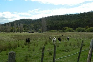Lot 1, 120 Ellendale Road, Westerway, Tas 7140
