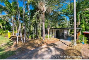 325 Mills Avenue, Frenchville, Qld 4701