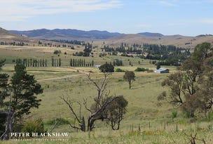 3499 Monaro Highway - Silver Brumby Estate, Bredbo, NSW 2626
