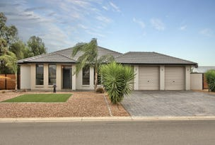 11 Gameau Road, Two Wells, SA 5501