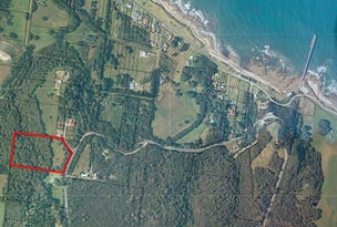Lot 1 Skyline Drive, Naracoopa, King Island, Tas 7256