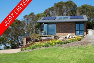 806 Cape Nelson Light House Road, Portland, Vic 3305