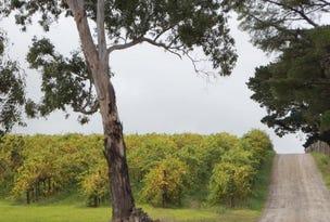 Lot 51 Peters Creek Road, Kangarilla, SA 5157