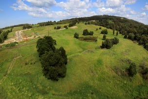 Lot 510 Huntingdale Park Estate, Berry, NSW 2535