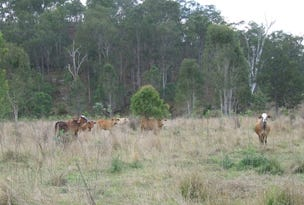 Coppin Road, Monto, Qld 4630