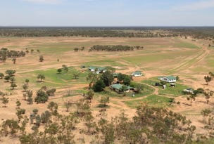~ South Comongin & Nyngarie, Quilpie, Qld 4480