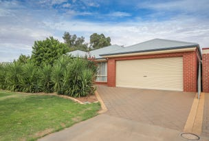 45 Belleview Drive, Irymple, Vic 3498