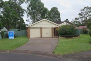13 Burrowell Close, Raymond Terrace, NSW 2324